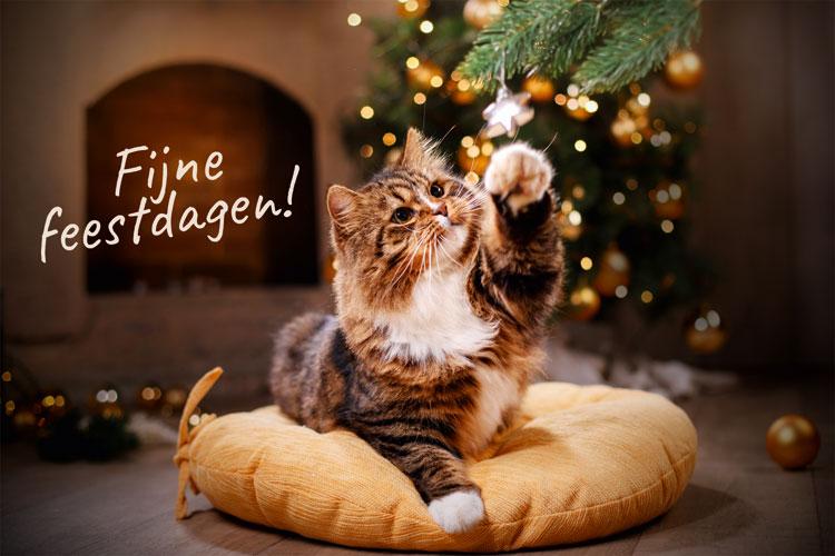 Fijne feestdagen - kerst - nieuwjaar