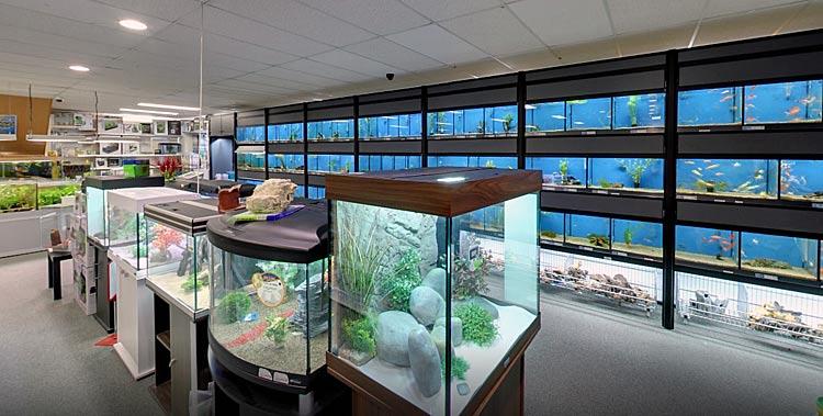 Sascha Diertotaal aquariumafdeling