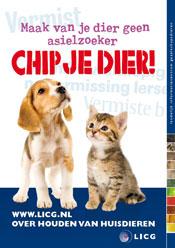 Dibevo geeft aandacht aan chippen van honden en katten tijdens Juni Chipmaand.
