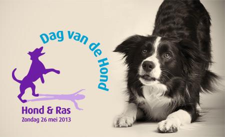 Dibevo is Vriend van de Dag van de Hond