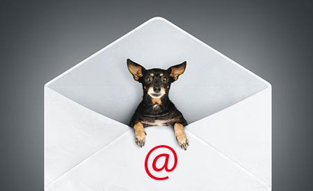 Verstuur jij al nieuwsbrieven naar je klanten?