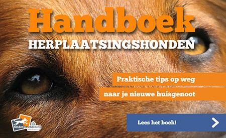 Handboek herplaatsingshonden
