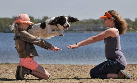 Tijdens Animal Event: de leukste hondentruc van Nederland