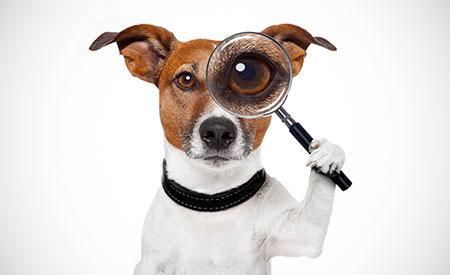Inspectie en onhaalbare eisen?