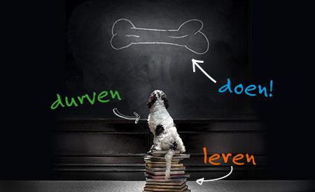 Dibevo-Vakbeurs 2014 Leren, durven, doen!