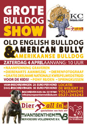Grote Bulldogshow bij Dier All-in Vollenhove