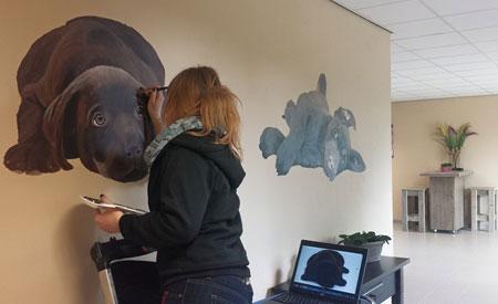 Muurschilderingen bij Huisdierenhotel De Hegge