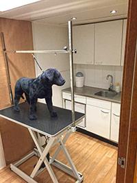 Dierenspeciaalzaak Kleverpark biedt ruimte aan klanten voor de vachtverzorgin van hun huisdier