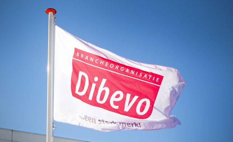 Dibevo-vlag