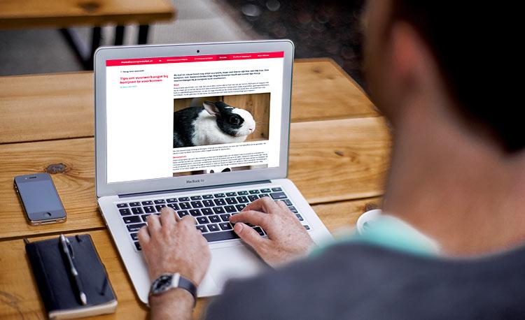 Bloggen; daarmee promoot je je bedrijf