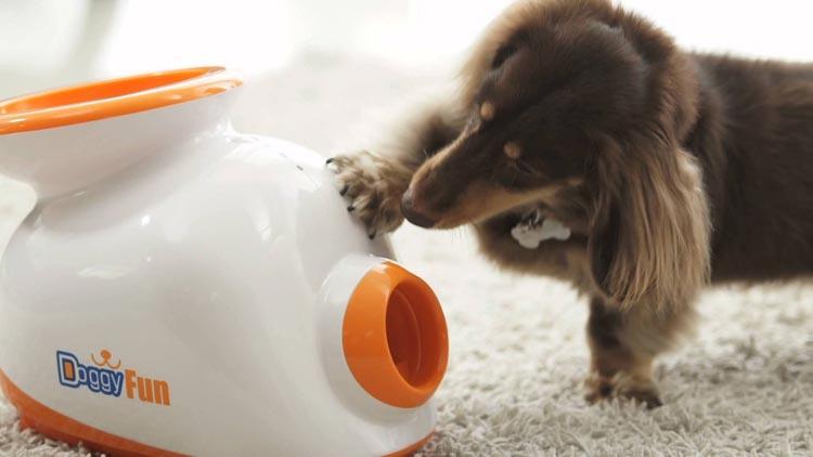 Hofman Animal Care Doggy fun ball launcher
