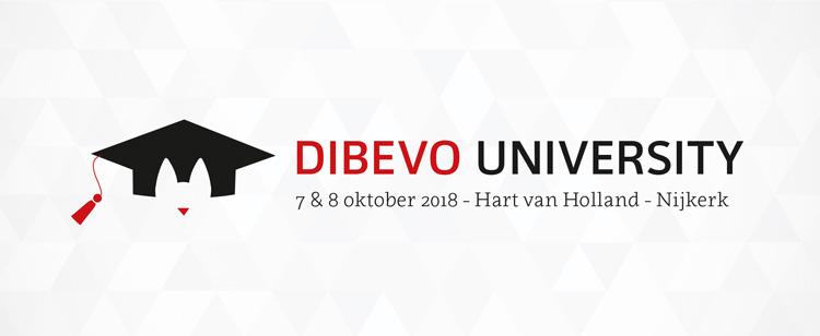 Dibevo University beeldmerk