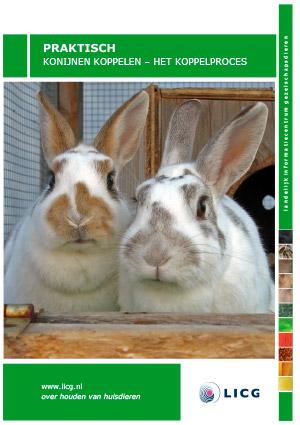 Folder over het matchen van twee konijnen