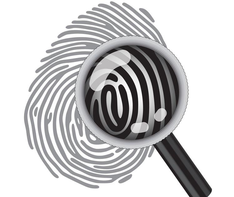 Diefstal of ander fraudevergrijp