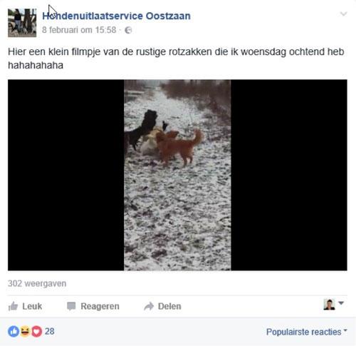 Filmpjes zijn de toekomst op Facebook