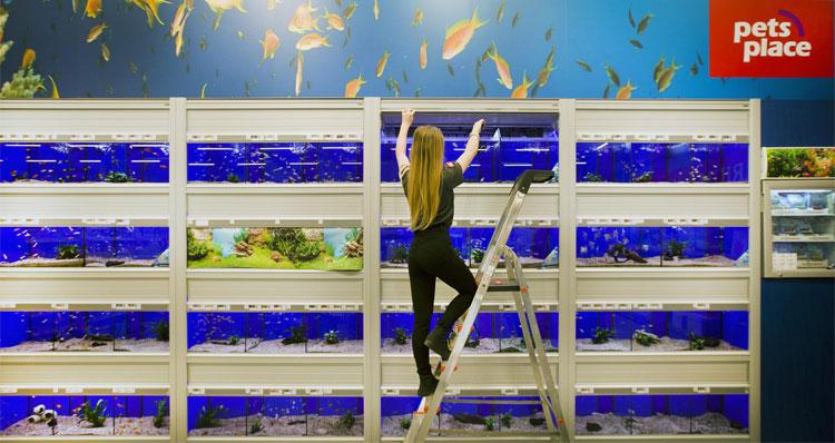 Aquariumwand