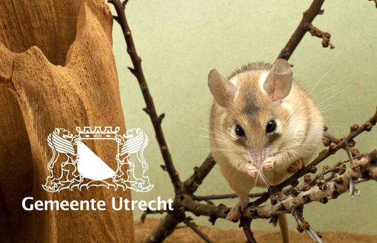 Dierbaar gemeente Utrecht