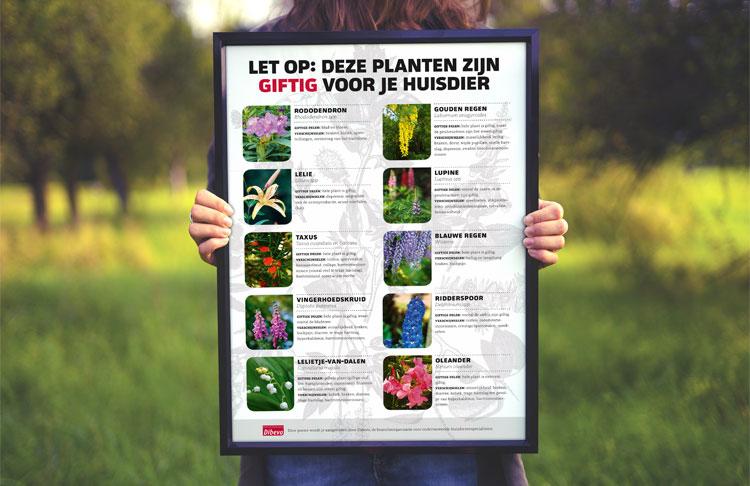 Mini-poster giftige planten in de tuin