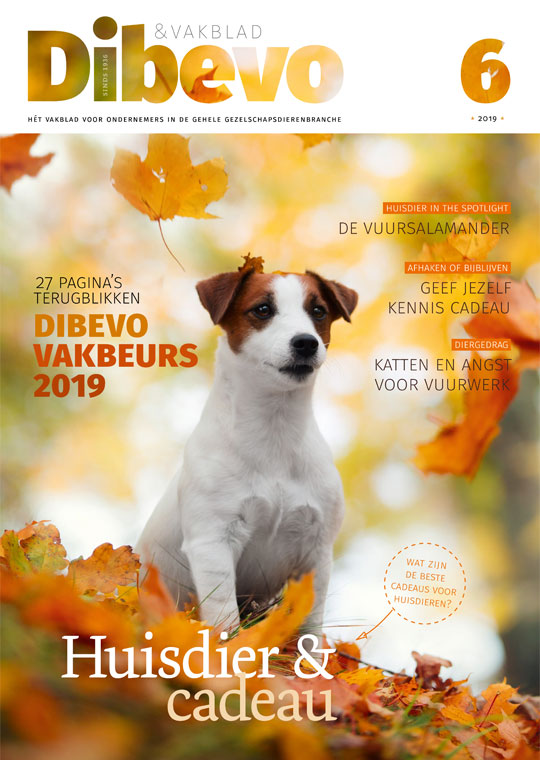 Dibevo-Vakblad nummer 6 - 2019