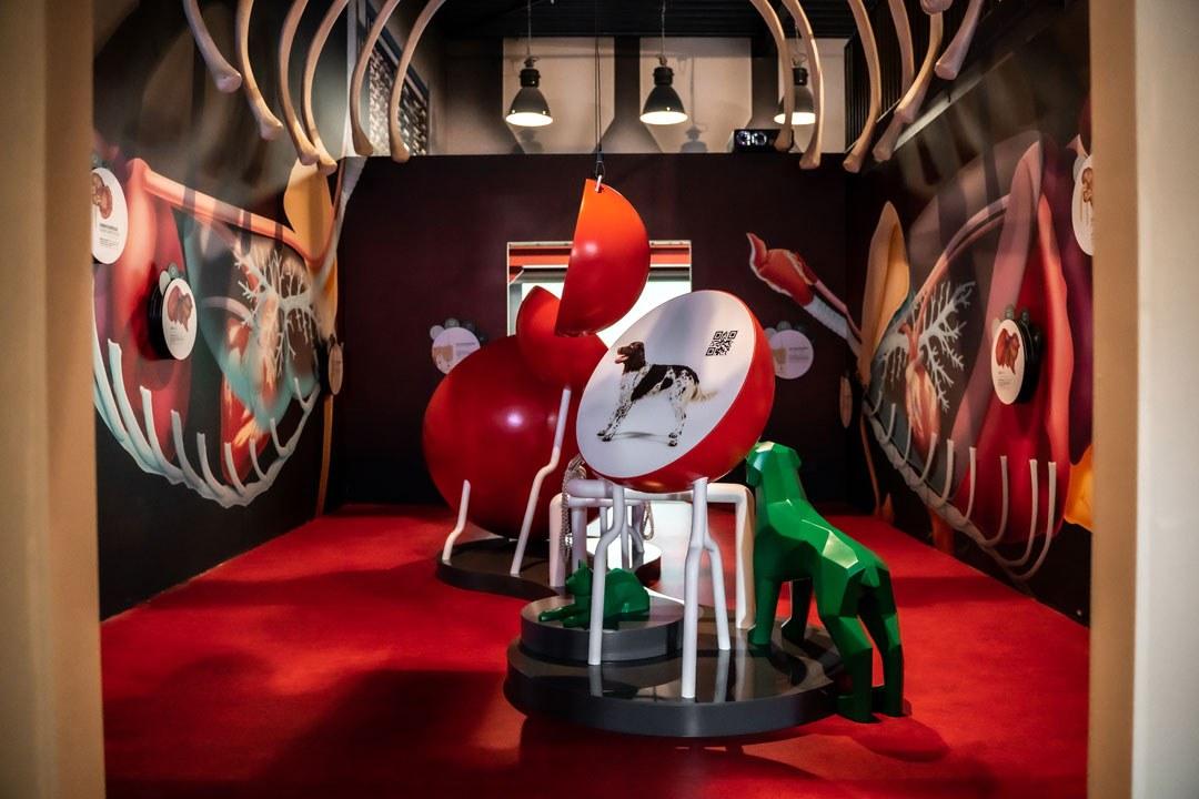 Prins Petfoods opent bezoekerscentrum